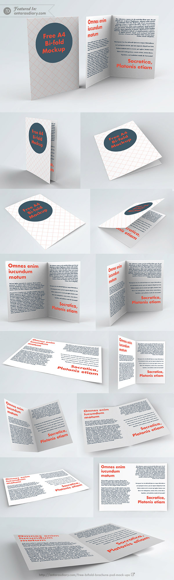 100% Free A4 Bi-Fold Brochure Mockup - 14 views