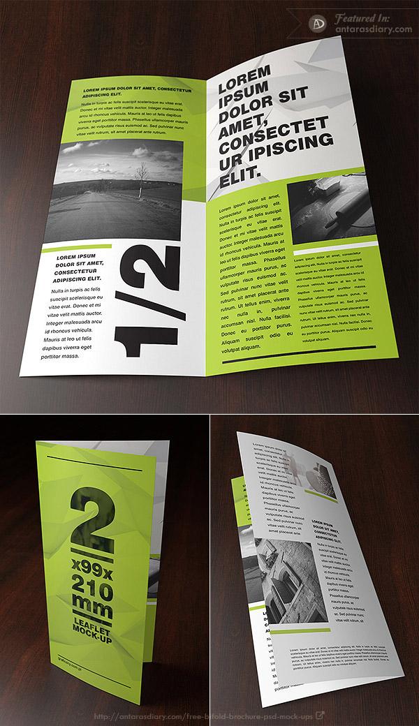 Free double DL leaflet mockup