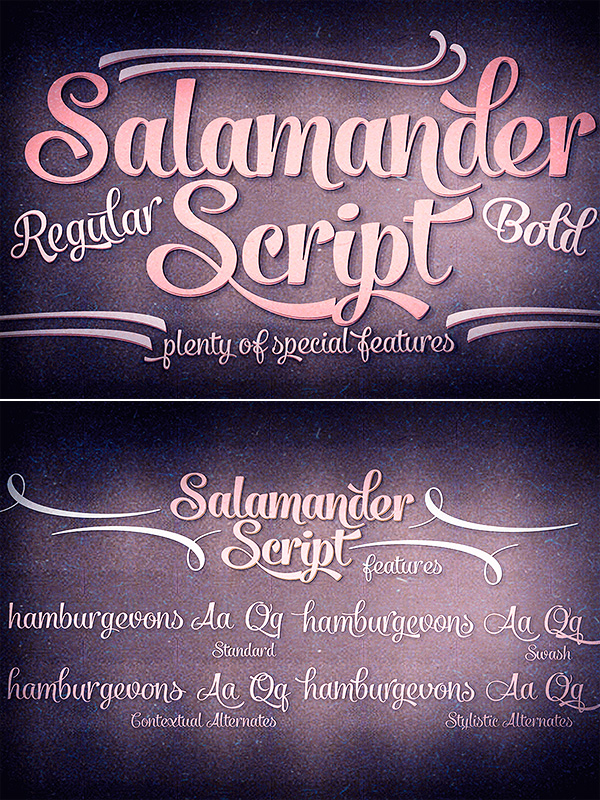 Salamander Script font family